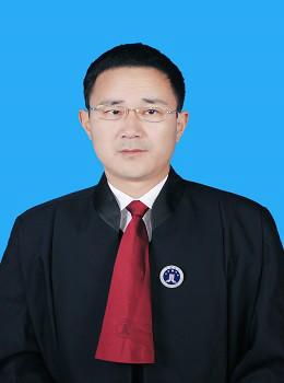 陈亚林律师/副教授